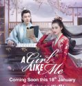 Drama China A Girl Like Me 2021 ONGOING